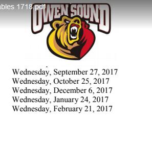 Attack hockey league owen sound